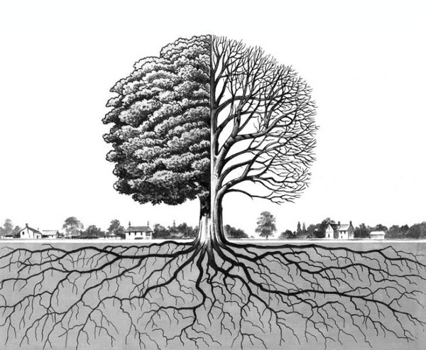 Illudtration: tree and roots