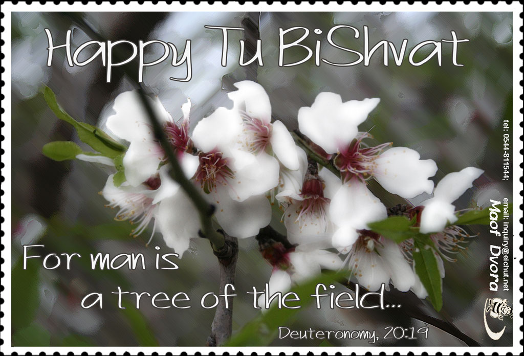 Greeting card for Tu BiShvat 2016