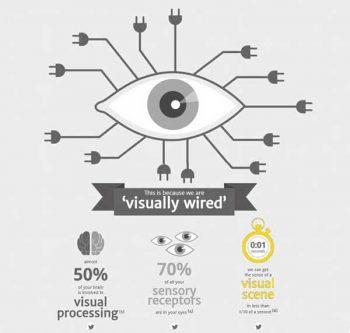 Infographics: visual sensors