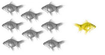 אילוסטרציה: שינויים - אתגר