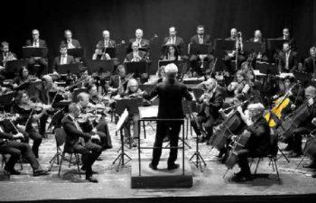 Orchestra - harmony