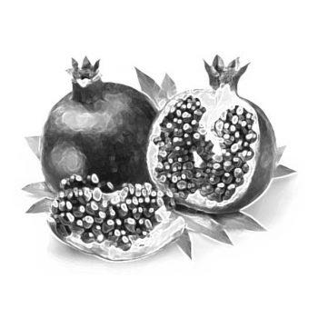 Rosh HaShana - pommegranates - renewal