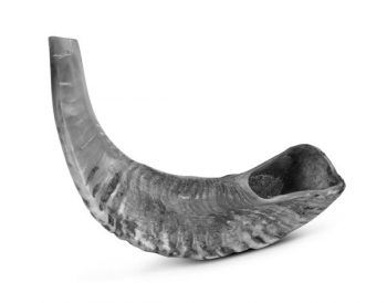 Illustration: shofar - Rosh HaShana