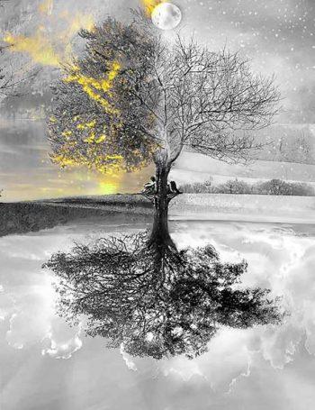 שינויים שבטבע